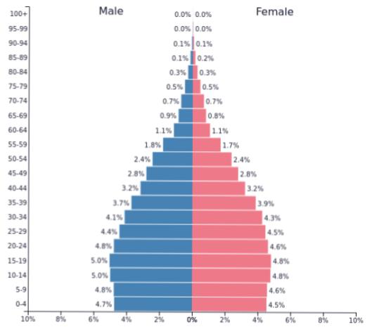 Половозрастная характеристика населения Бангладеш
