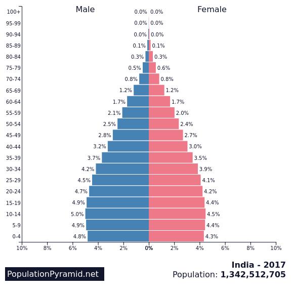 половозрастная  характеристика жителей Индии